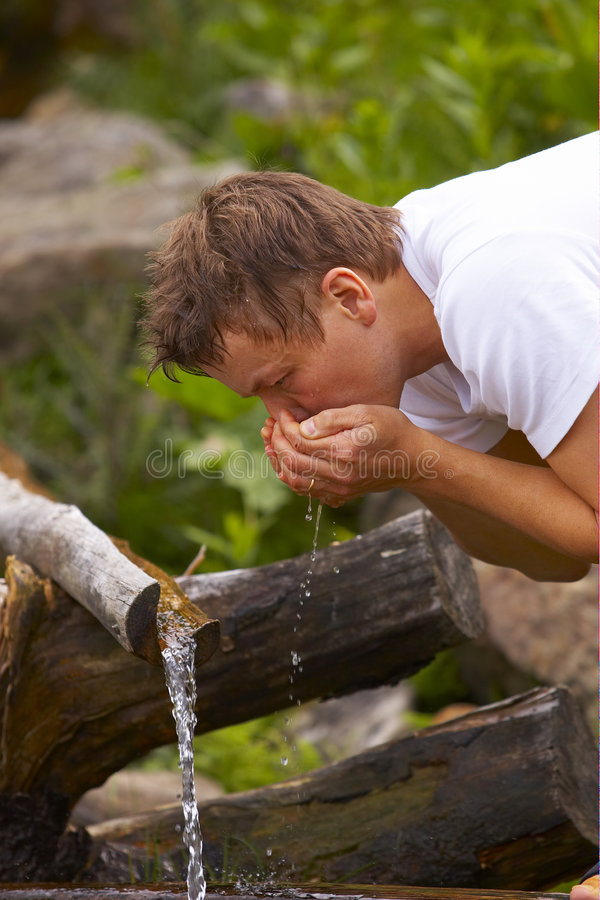 Drinking water from stream stock photos