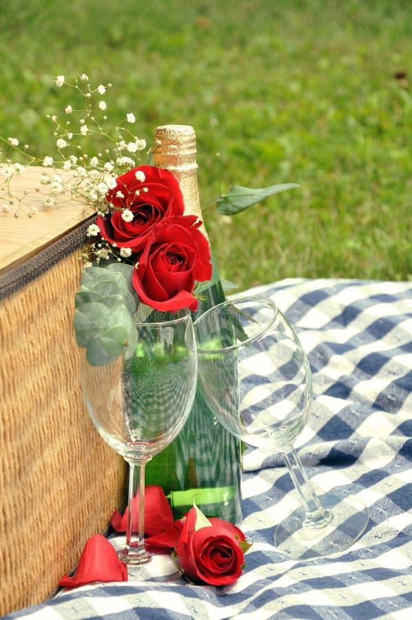 drinkpicknickromantiker fotografering för bildbyråer