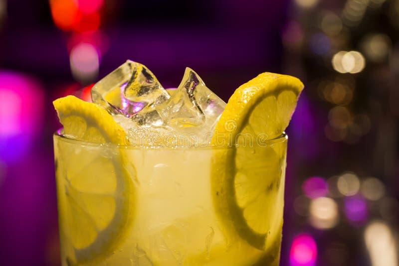 Drinkskott med frukter royaltyfri foto