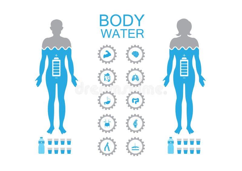 Drinkt de infographic illustratie van de lichaamsgezondheid de dehydratiesymptomen van het waterpictogram royalty-vrije illustratie