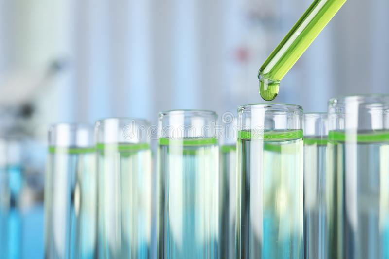 Dripping liquid into test tube on blurred background. Laboratory analysis stock images