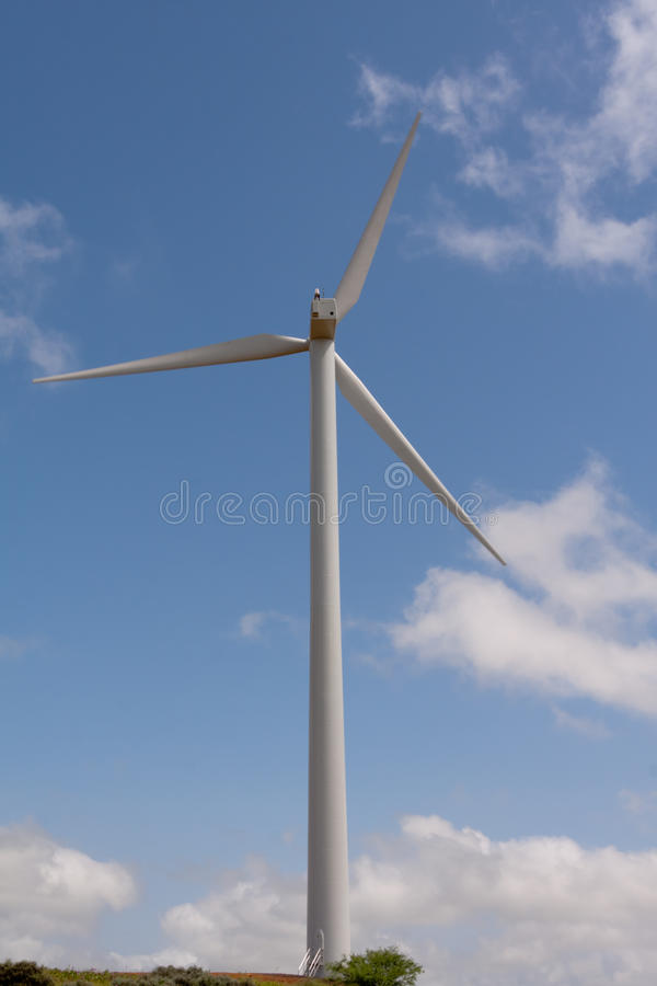driv wind royaltyfri fotografi
