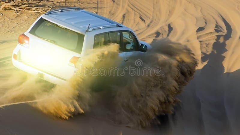 Drive ηλιοβασιλέματος άνοιξη στο γύρο σαφάρι ερήμων στοκ εικόνες