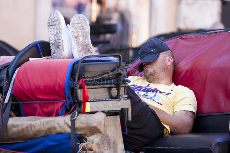 Driver chariot resting and taking a nap royalty free stock images