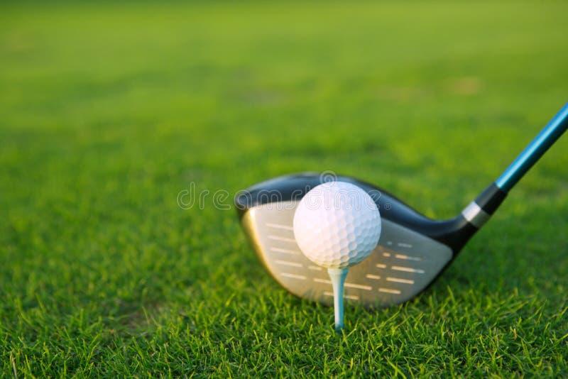 Driver del randello di sfera del T di golf nel corso dell'erba verde fotografia stock libera da diritti