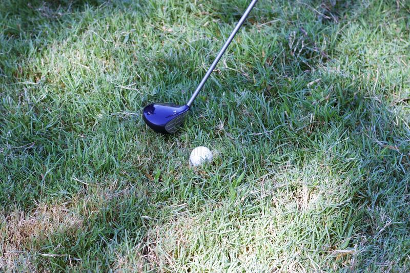 Driver is hitting golf ball royalty free stock photo