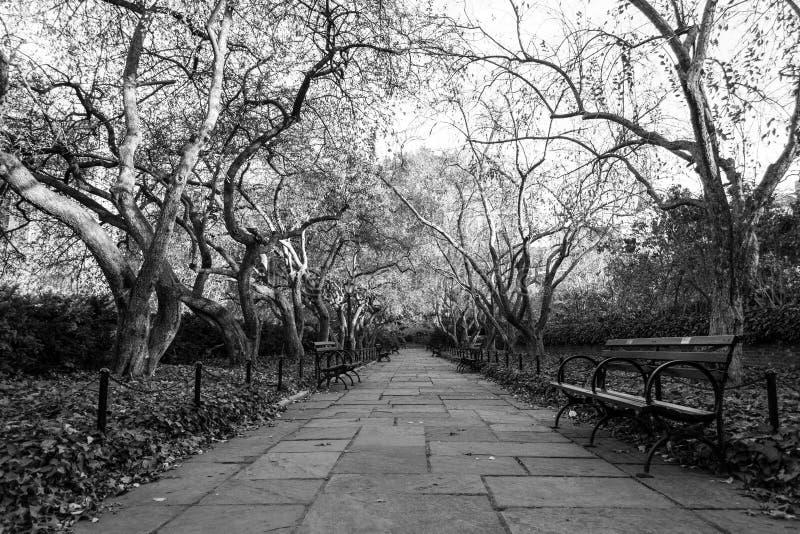 Drivhusträdgården är den enda formella trädgården i Central Park fotografering för bildbyråer