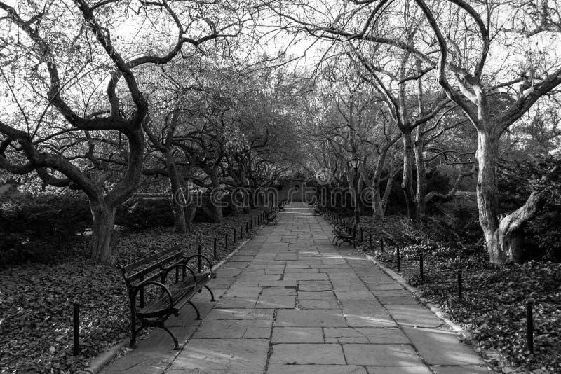 Drivhusträdgården är den enda formella trädgården i Central Park royaltyfria foton
