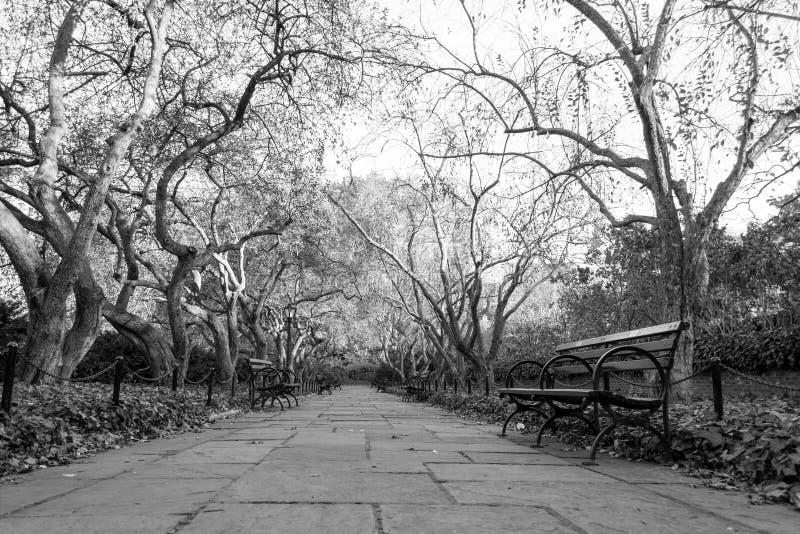 Drivhusträdgården är den enda formella trädgården i Central Park royaltyfria bilder