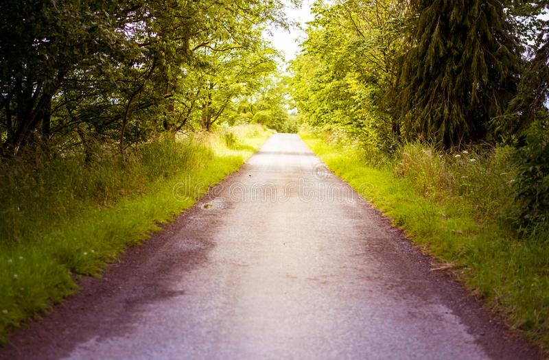 Driving along a countryside road in summer, central Scotland, Scenic countryside landscape with trees stock images