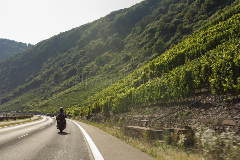 Driving car on famous green terraced vineyards in Mosel river valley, Germany, production of quality white and red wine, riesling. Driving car on famous green royalty free stock photography