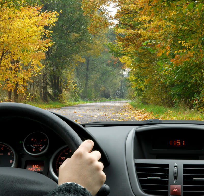 Driving in fall stock photos