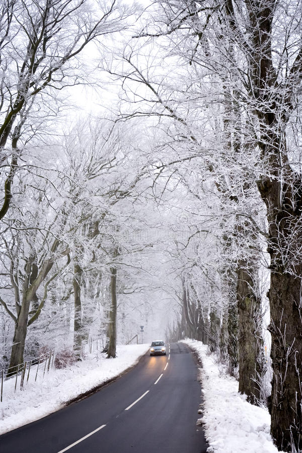 Free Driving In Winter Royalty Free Stock Images - 49595399