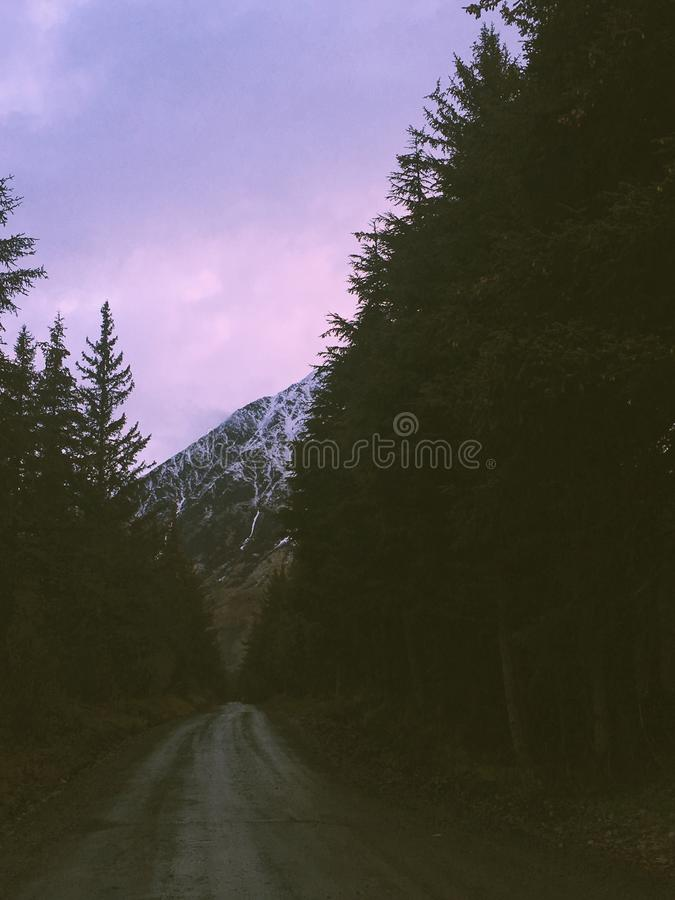 On the road again. Driving into the mountains in Girdwood royalty free stock photography