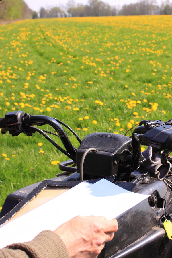 Driving off road navigate. Looking at the map to navigate through the open field. Driving off the road. Green field with yellow spring flowers stock image