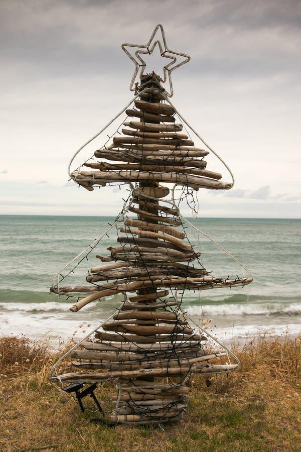 Drivvedjulgran, Pouaua strand, Gisborne, Nya Zeeland arkivfoton