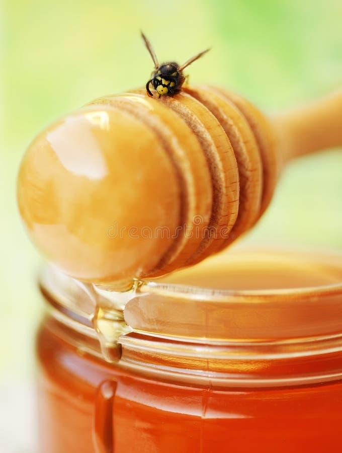 Drizzler do mel com abelha imagens de stock royalty free
