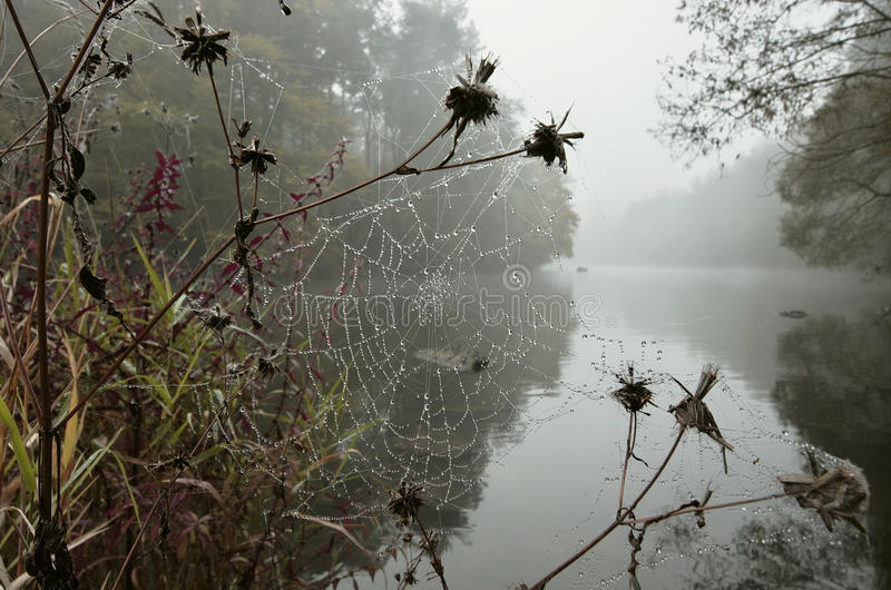 Download Drizzly Weather Stock Photos - Image: 27254673