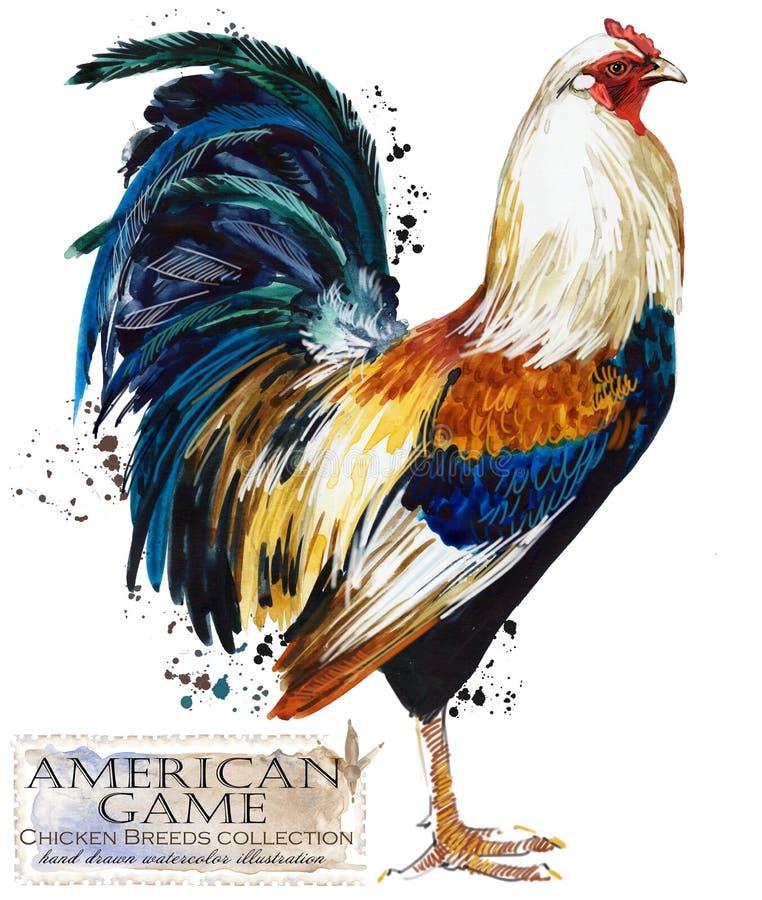 Drobiowy uprawiać ziemię Kurczak hoduje serie domowa rolna ptasia ilustracja royalty ilustracja