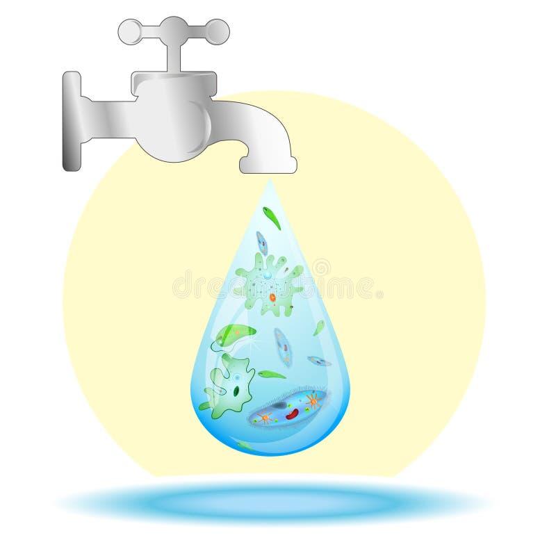 Drobnoustroje w kropli brudna woda ilustracja wektor
