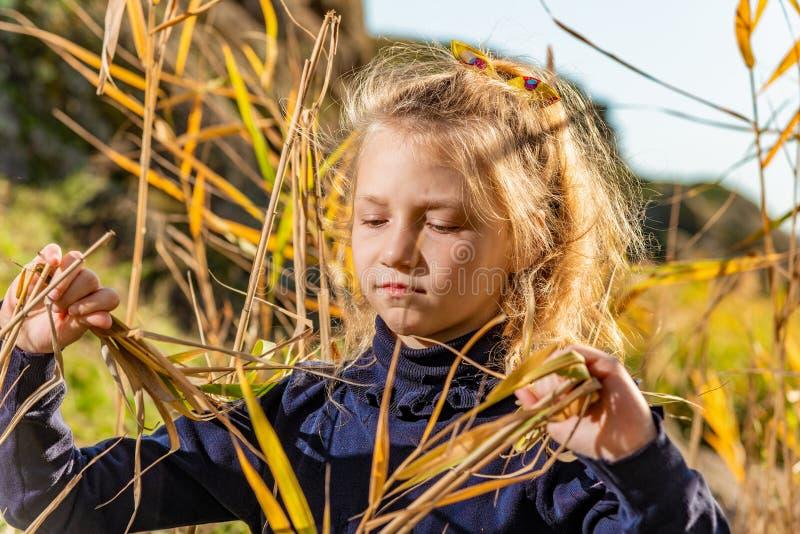 Droevig en droevig meisje in een blauwe sweater in het riet op de achtergrond van rotsen in de de herfstmiddag stock foto