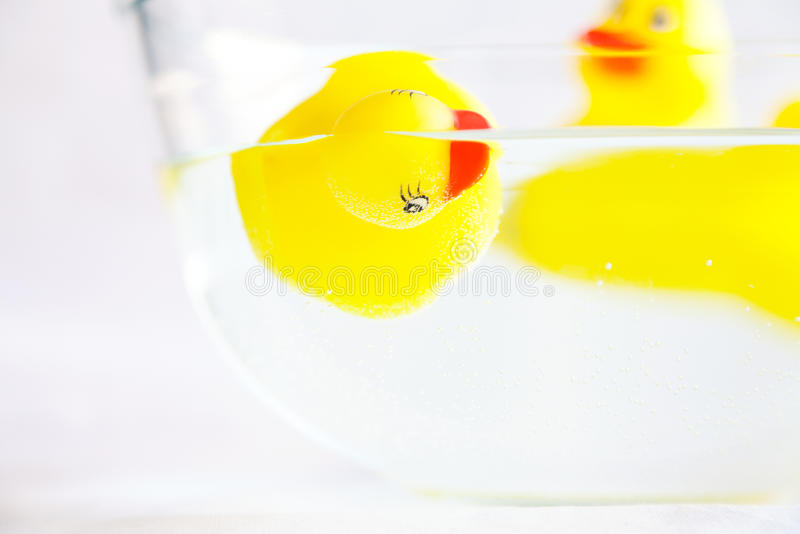 Droevig geel rubbereendstuk speelgoed die in het water verdrinken stock foto's