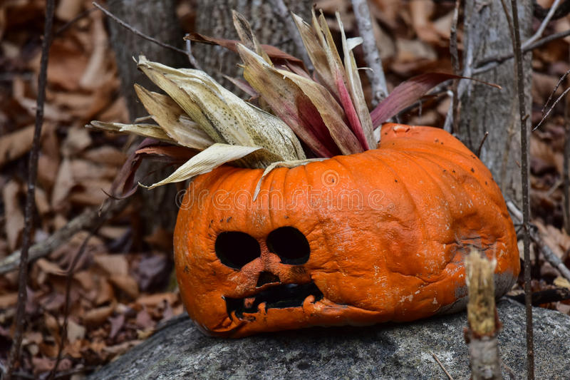 Droevige verworpen Halloween-pompoen stock foto