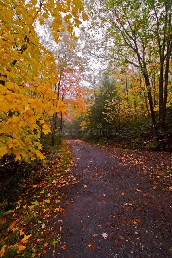 drogę na pieszą wycieczkę zdjęcie royalty free