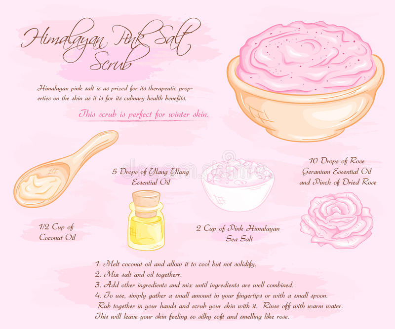 Drog illustrationen för vektorn skurar handen av hymalayan den salta rosa färgrosen recept vektor illustrationer