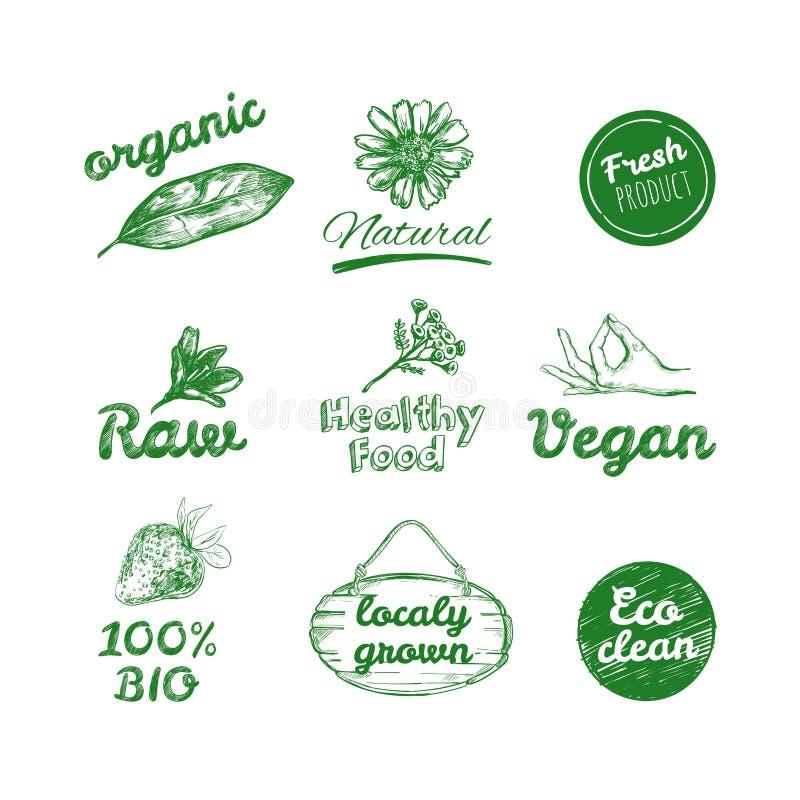 Drog logoer för vektor hand Sunt äta logotypuppsättningen Strikt vegetarian, naturlig mat och drinktecken Lantgårdmarknad, lagers royaltyfri illustrationer