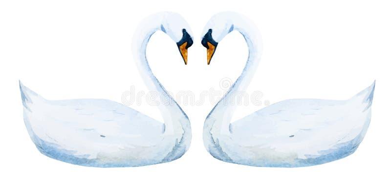 Drog svanar för vattenfärg hand stock illustrationer