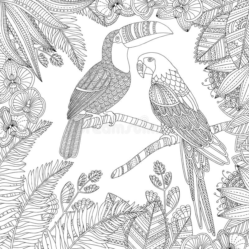 Drog tukanfågeln och munkhättor för vektor mekaniskt säga efter handen den tropiska illustrationen för vuxen färgläggningbok Skis royaltyfria foton