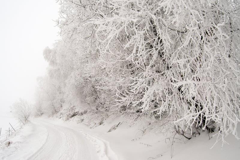 droga śnieżna fotografia royalty free