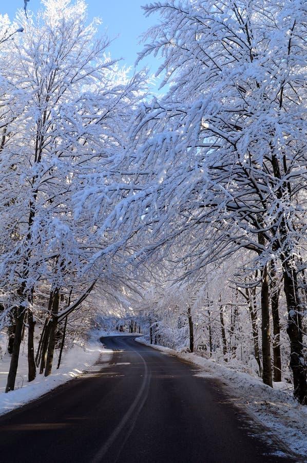 droga śnieg obraz stock
