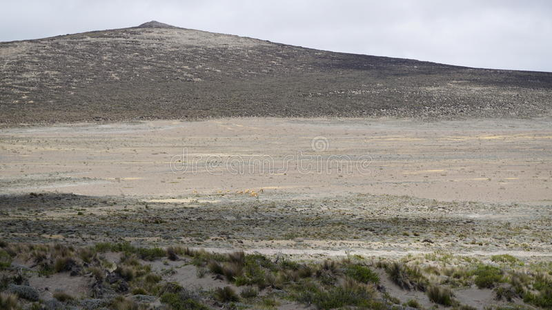 Droga Chimborazo Ekwador zdjęcia stock