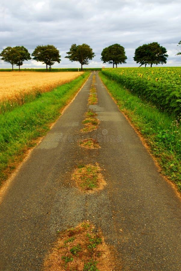 droga do wiejskiej france fotografia stock