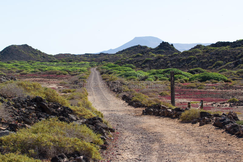 Droga gruntowa w Hiszpania, Canarian wyspy Linia podziału Bicyklu ślad obraz stock
