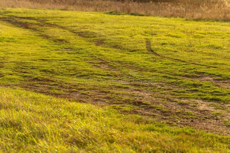 Droga gruntowa w polu na trawie obraz royalty free