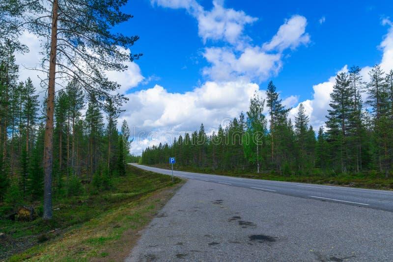 Droga 81 i niedaleki las w Lapland, zdjęcia royalty free