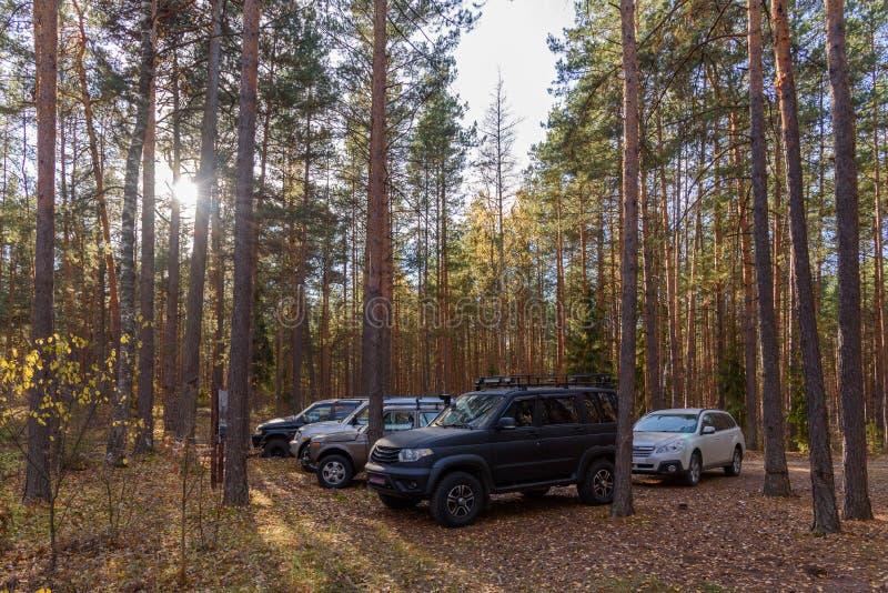 Droga klub na polanie w lesie zdjęcie stock