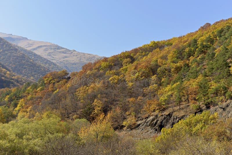 Droga kolorowa i Pogodna jesień zdjęcia royalty free