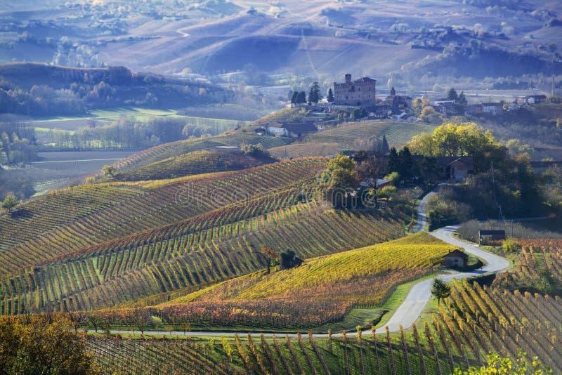 Droga między wzgórzami Langa Piemonte Włochy zdjęcia royalty free