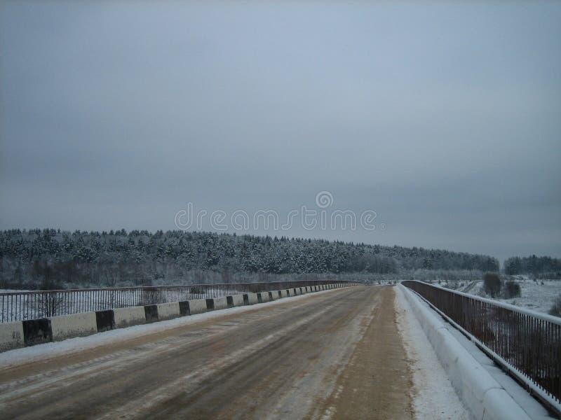 Droga most nad rzeką w lasowej krawędzi w zimie na szarym chmurnym dniu zdjęcia royalty free