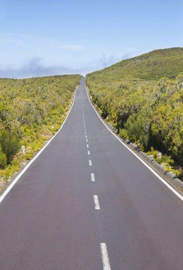 Droga na plateau Paula da Serra na Maderze obraz stock