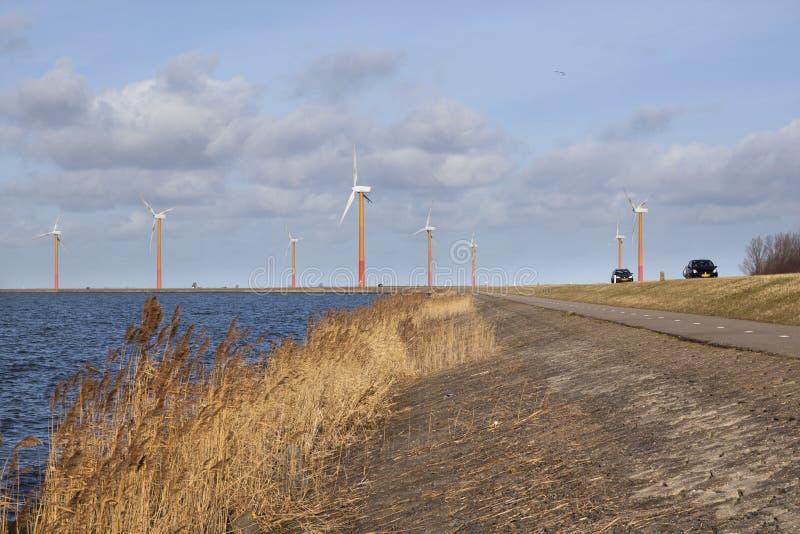 Droga na wyspie Flevoland z silnikami wiatrowymi i niebieskim niebem zdjęcie royalty free