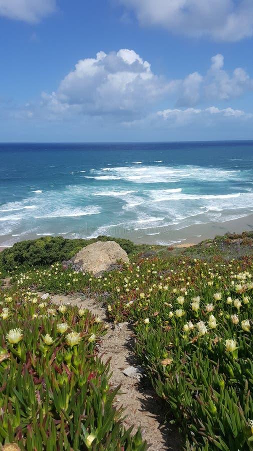 Droga niebo oceanu plaża fotografia royalty free