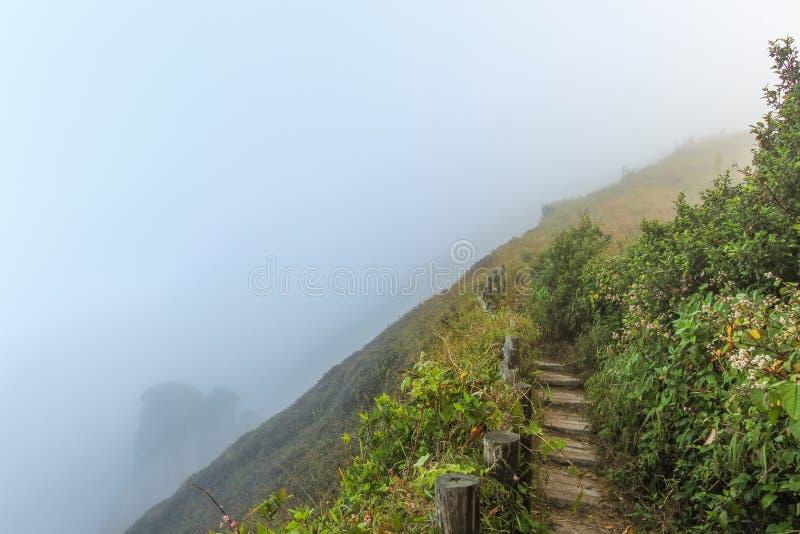 Droga przemian na flance wzgórze na górach które zakrywali mgłą zdjęcia stock