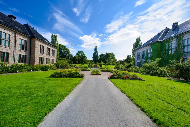 Droga przemian w ogródzie obraz royalty free