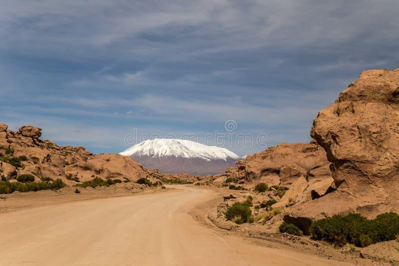 Droga przez boliwijkę Altiplano obrazy royalty free