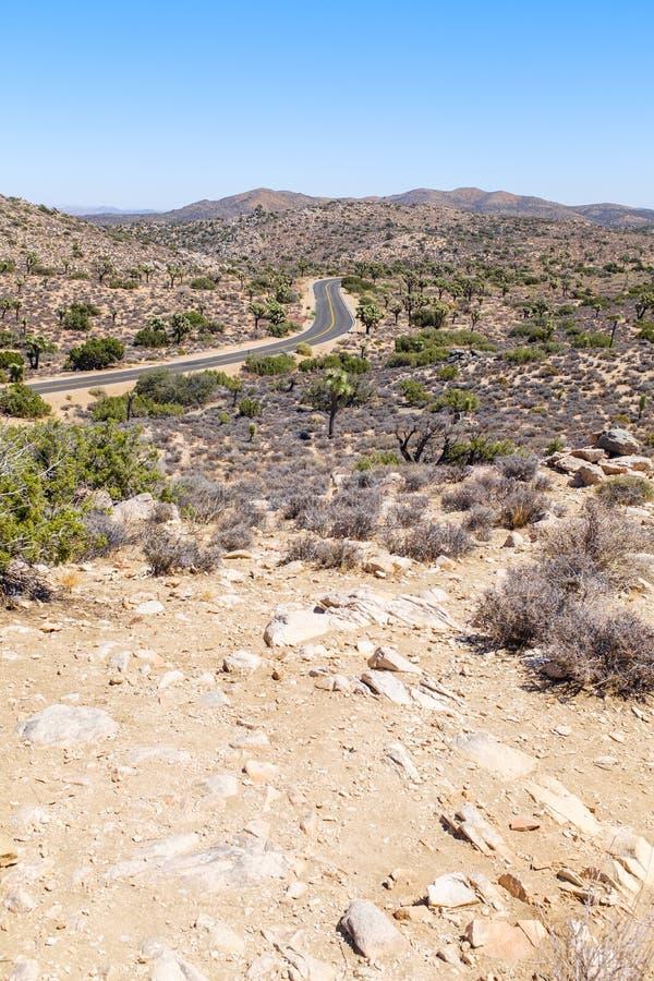 Droga przez Joshua drzewa parka narodowego obrazy stock